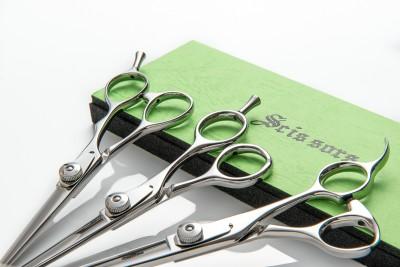 Professional Scissors 2
