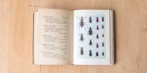 Rare_Books-2